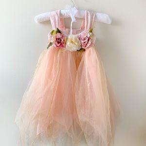Fairy Costume Fairy Dust dress